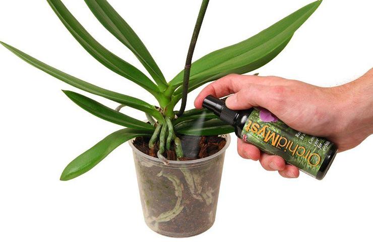 Удобрение орхидеи